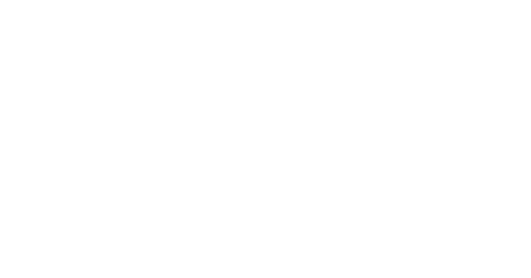 Norwegian Cruise Lines Logo