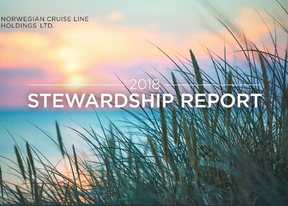 Norwegian Cruiseline Financial Stewardship Report