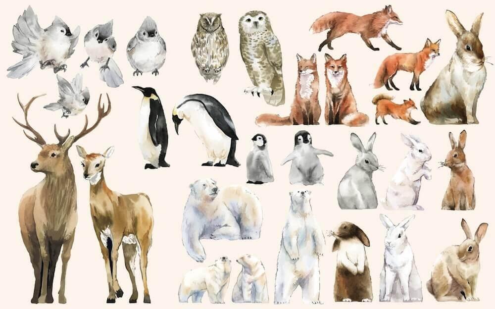 awesome animal illustrations